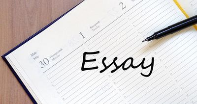 Best Essay Tips Andamp; Guidebook  college students